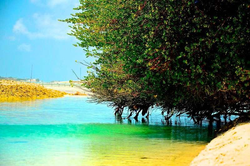 Thulusdhoo-maldivas-isla