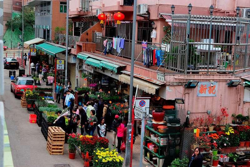 Mong-Kok-Flower-Market